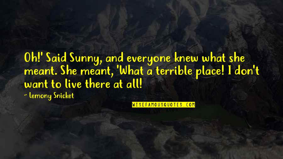 I Meant What I Said Quotes By Lemony Snicket: Oh!' Said Sunny, and everyone knew what she