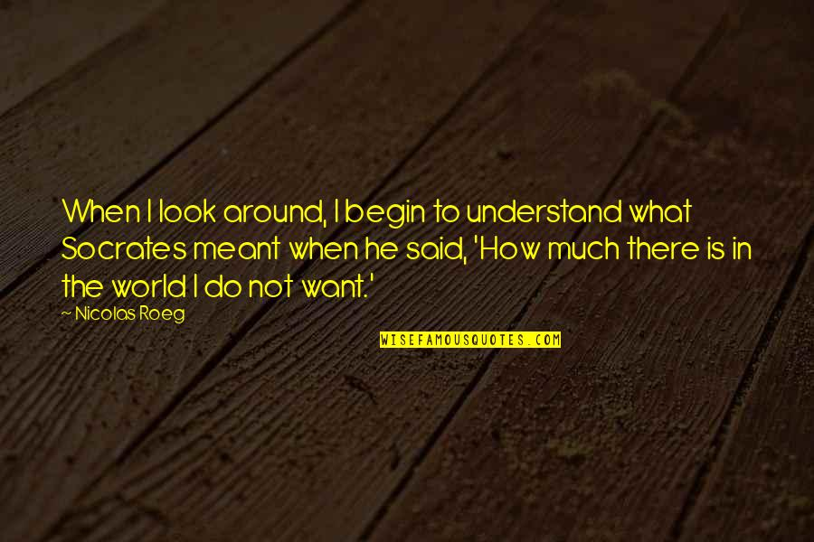 I Meant What I Said Quotes By Nicolas Roeg: When I look around, I begin to understand