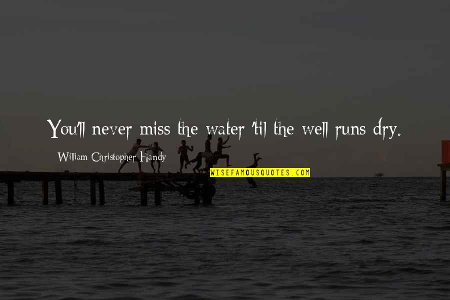 I Miss You More Quotes By William Christopher Handy: You'll never miss the water 'til the well