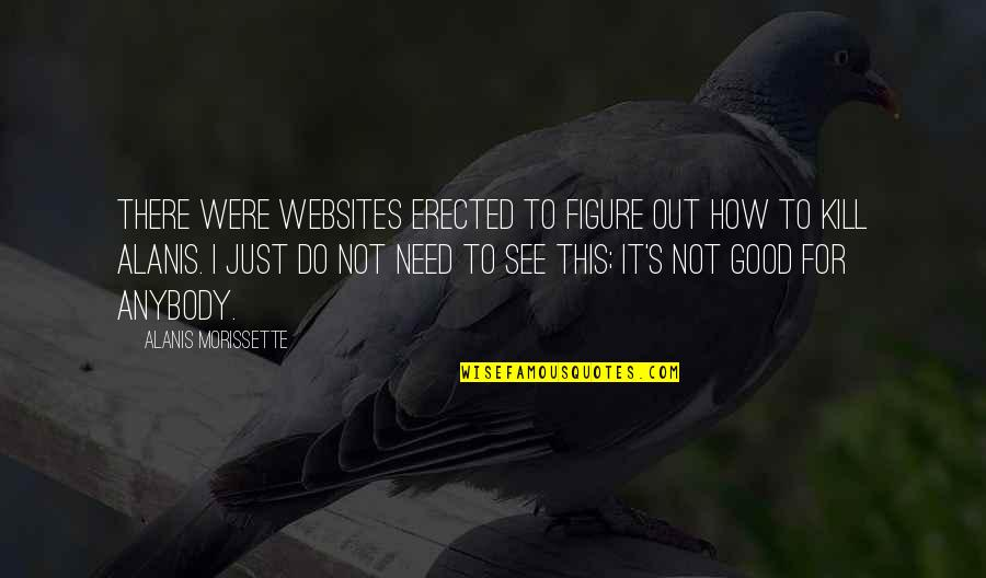 I Need This Quotes By Alanis Morissette: There were websites erected to figure out how