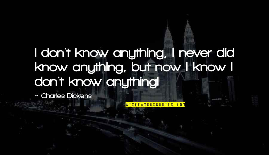 I Never Know Quotes By Charles Dickens: I don't know anything, I never did know