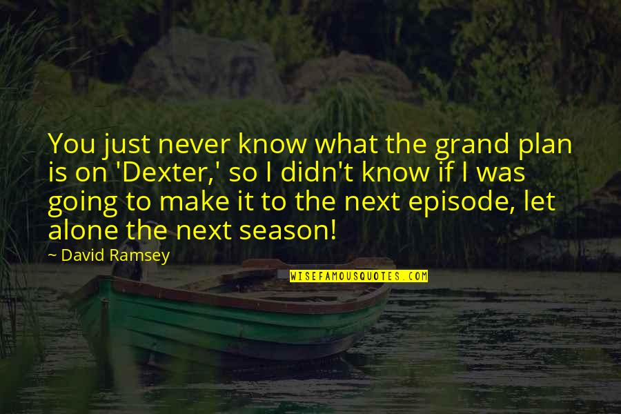 I Never Know Quotes By David Ramsey: You just never know what the grand plan