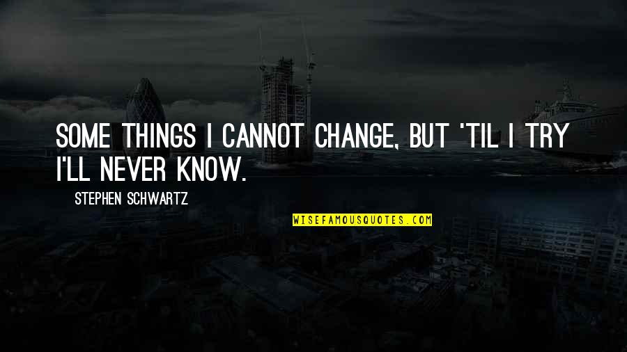 I Never Know Quotes By Stephen Schwartz: Some things I cannot change, but 'til I