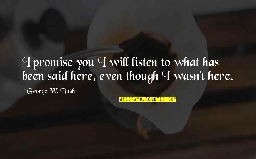 I Promise You Quotes By George W. Bush: I promise you I will listen to what