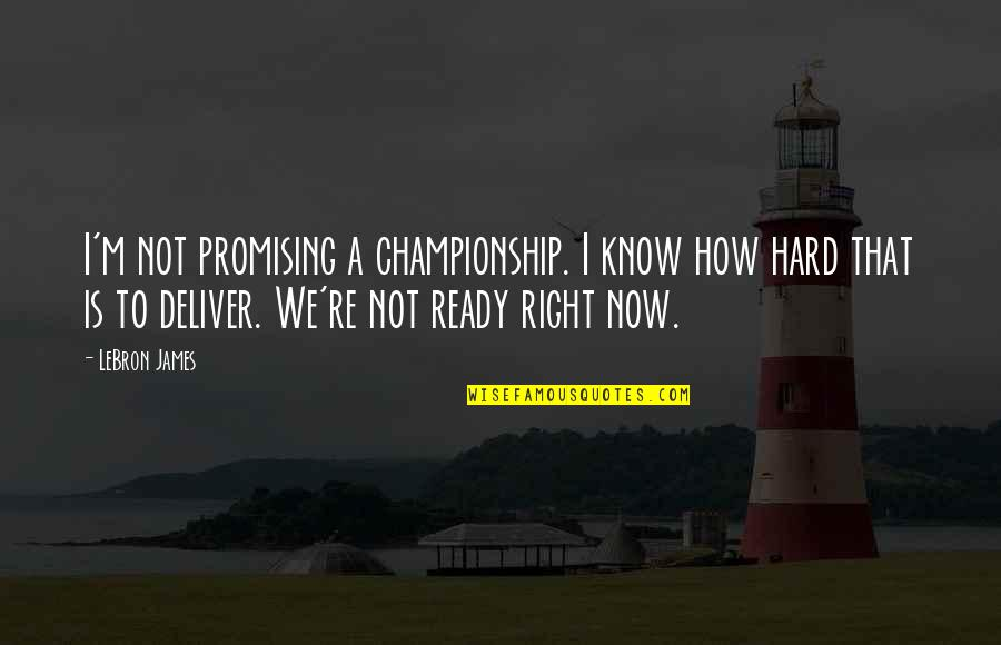 I Ready Quotes By LeBron James: I'm not promising a championship. I know how