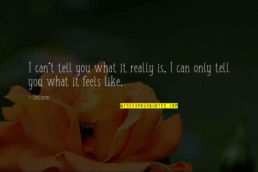 I Really You Quotes By Eminem: I can't tell you what it really is,