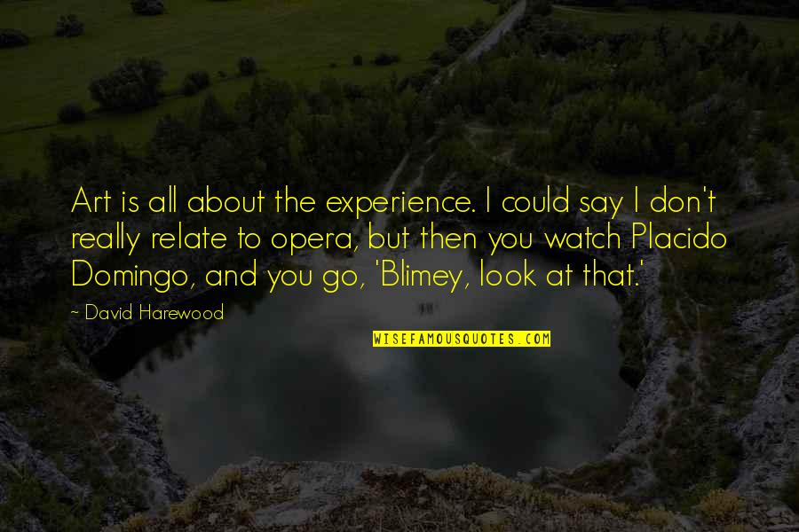 I Relate To That Quotes By David Harewood: Art is all about the experience. I could
