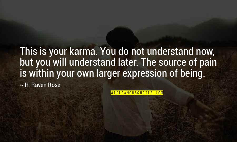 I Understand Your Pain Quotes By H. Raven Rose: This is your karma. You do not understand