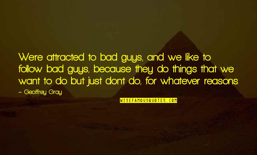 I Want A Guy Like Quotes By Geoffrey Gray: We're attracted to bad guys, and we like
