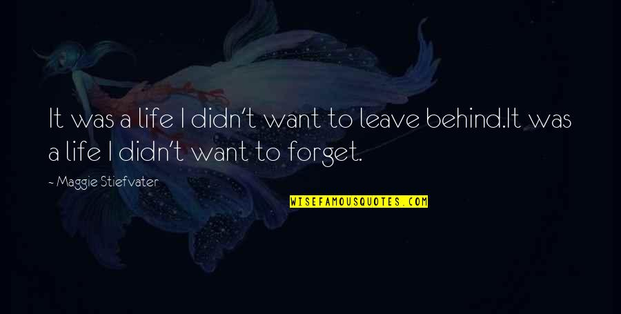 I Want To Forget Quotes By Maggie Stiefvater: It was a life I didn't want to