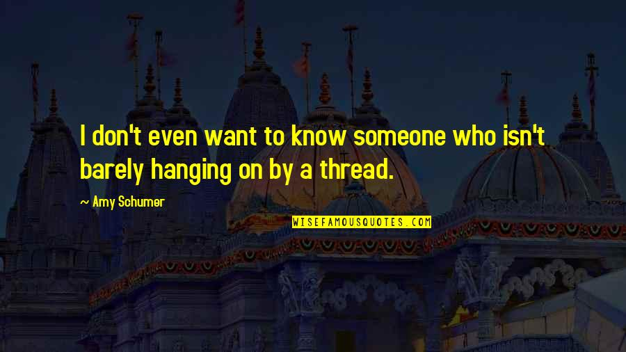 I Want You More Than You Know Quotes By Amy Schumer: I don't even want to know someone who