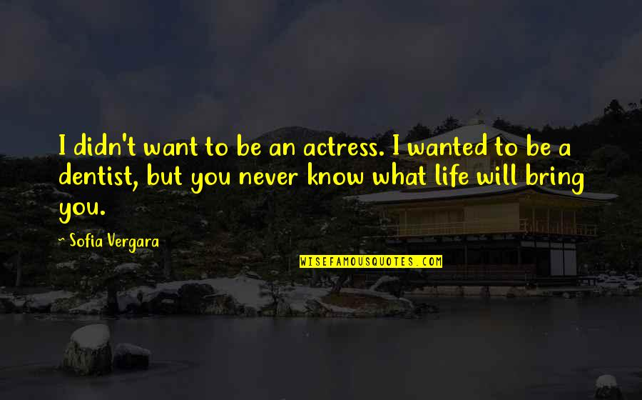 I Want You More Than You Know Quotes By Sofia Vergara: I didn't want to be an actress. I