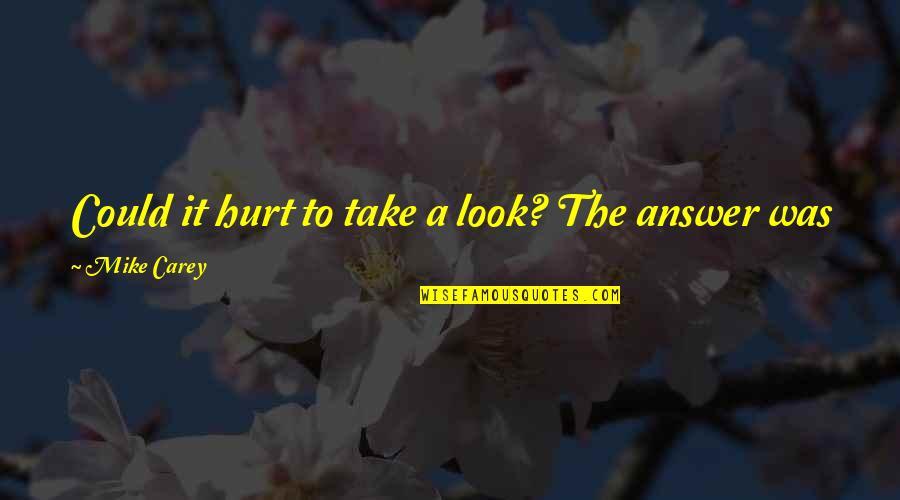 I Was Hurt Quotes By Mike Carey: Could it hurt to take a look? The