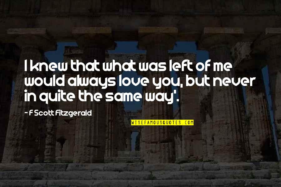 I Would Always Love You Quotes By F Scott Fitzgerald: I knew that what was left of me