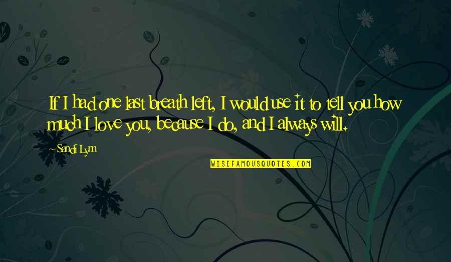 I Would Always Love You Quotes By Sandi Lynn: If I had one last breath left, I
