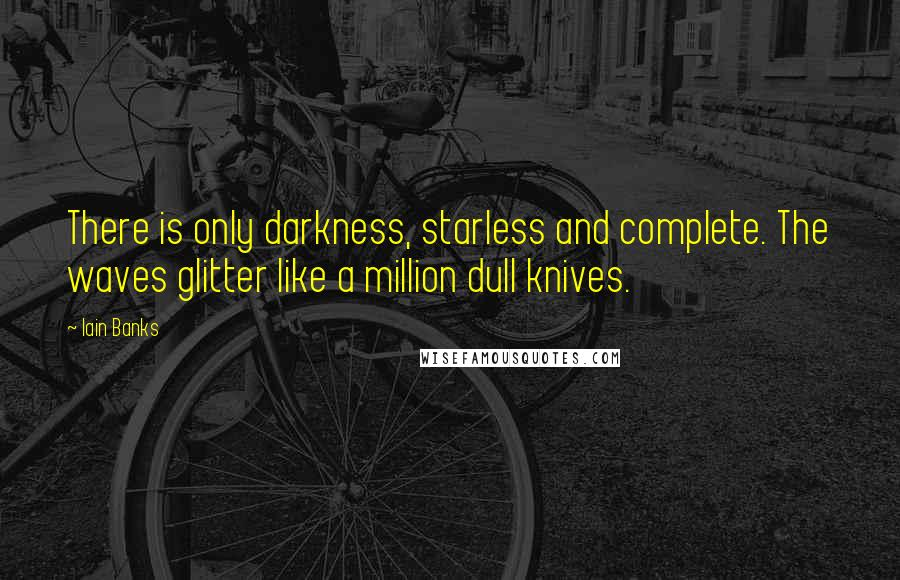 Iain Banks quotes: There is only darkness, starless and complete. The waves glitter like a million dull knives.