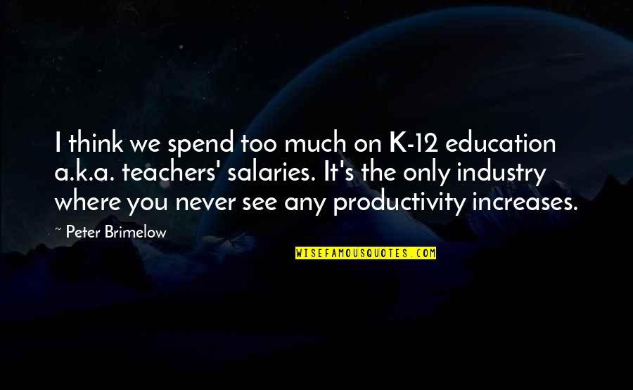 Icarus Girl Quotes By Peter Brimelow: I think we spend too much on K-12