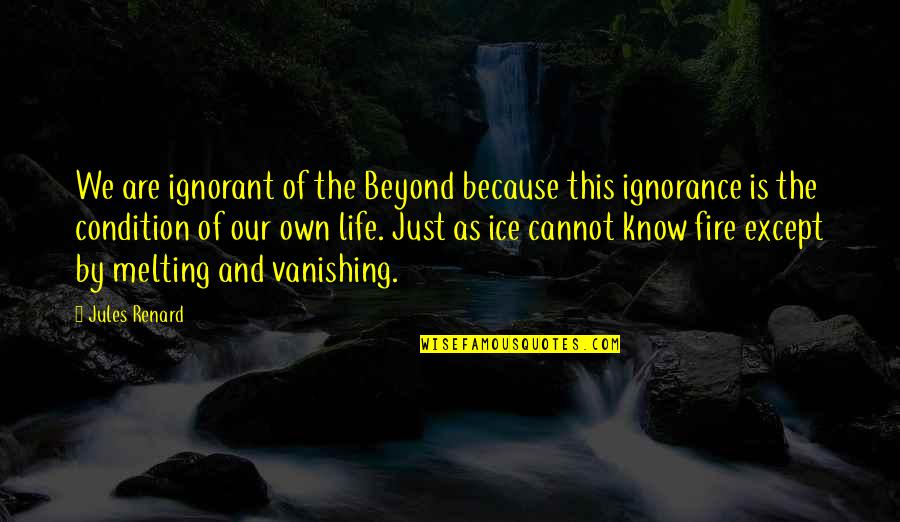 Ice And Fire Quotes By Jules Renard: We are ignorant of the Beyond because this