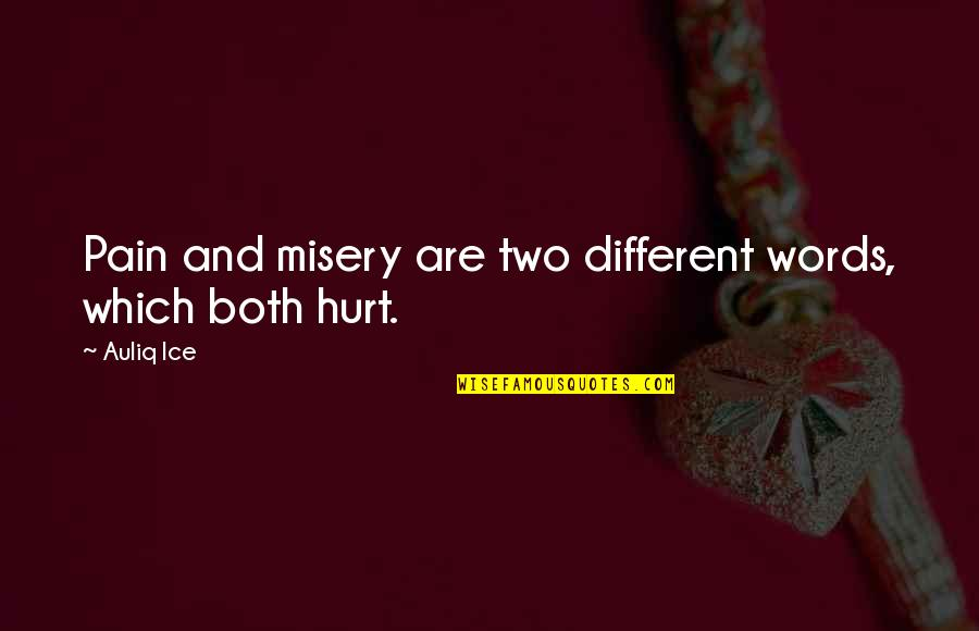 Ice Heart Quotes By Auliq Ice: Pain and misery are two different words, which