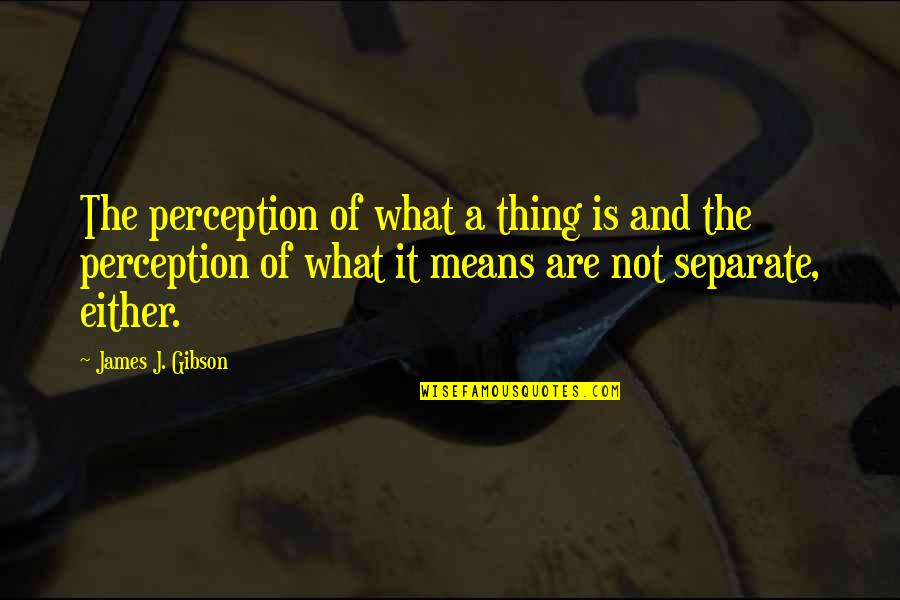 Iconosquare Single Quotes By James J. Gibson: The perception of what a thing is and