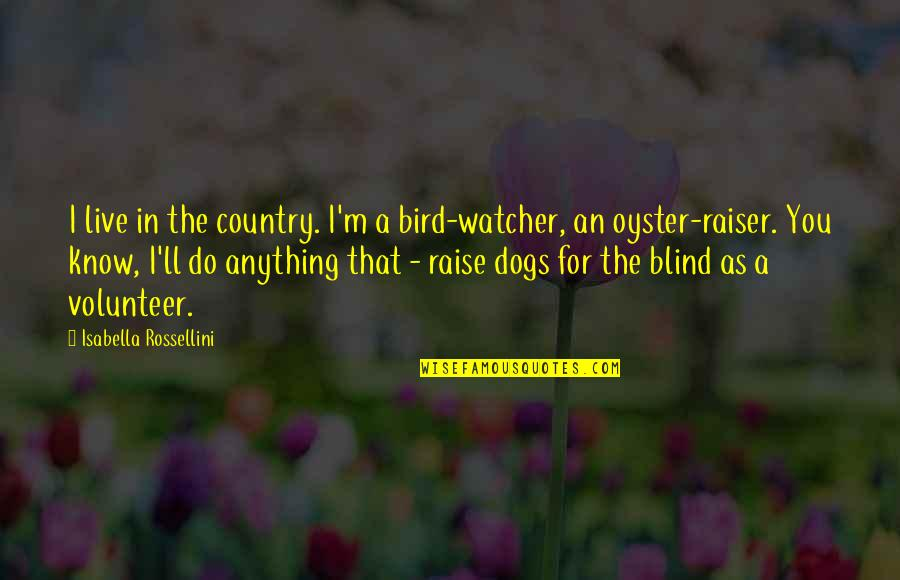 I'd Do Anything For You Quotes By Isabella Rossellini: I live in the country. I'm a bird-watcher,