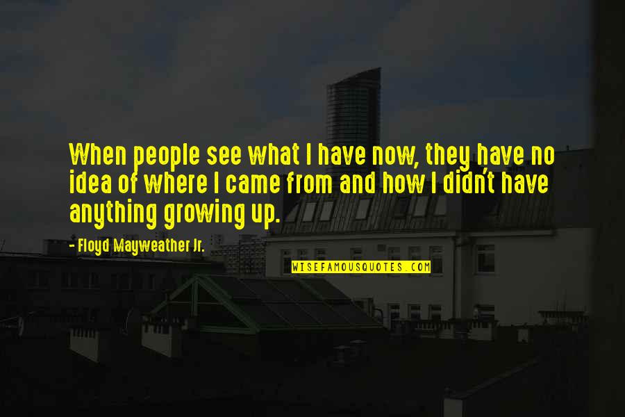 Idea Quotes By Floyd Mayweather Jr.: When people see what I have now, they