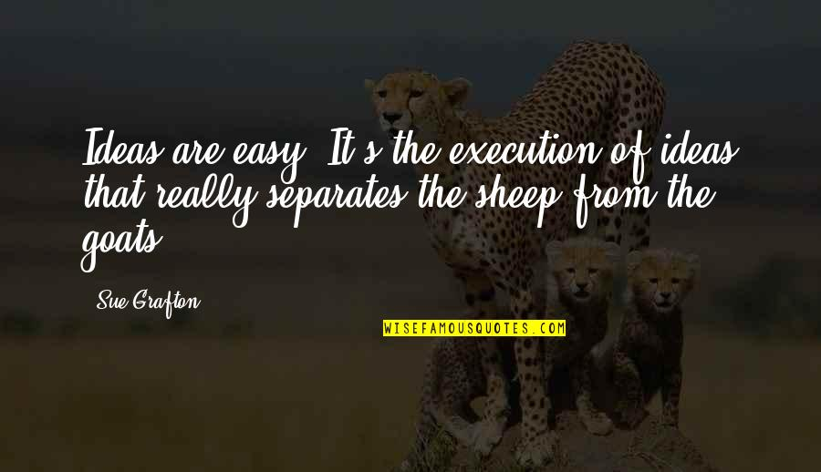 Ideas And Execution Quotes By Sue Grafton: Ideas are easy. It's the execution of ideas