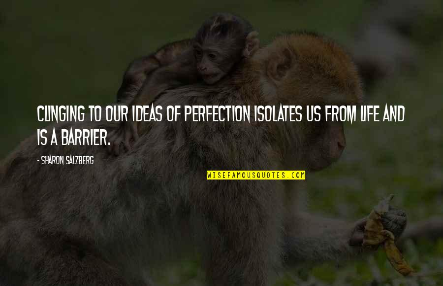 Ideas For Love Quotes By Sharon Salzberg: Clinging to our ideas of perfection isolates us