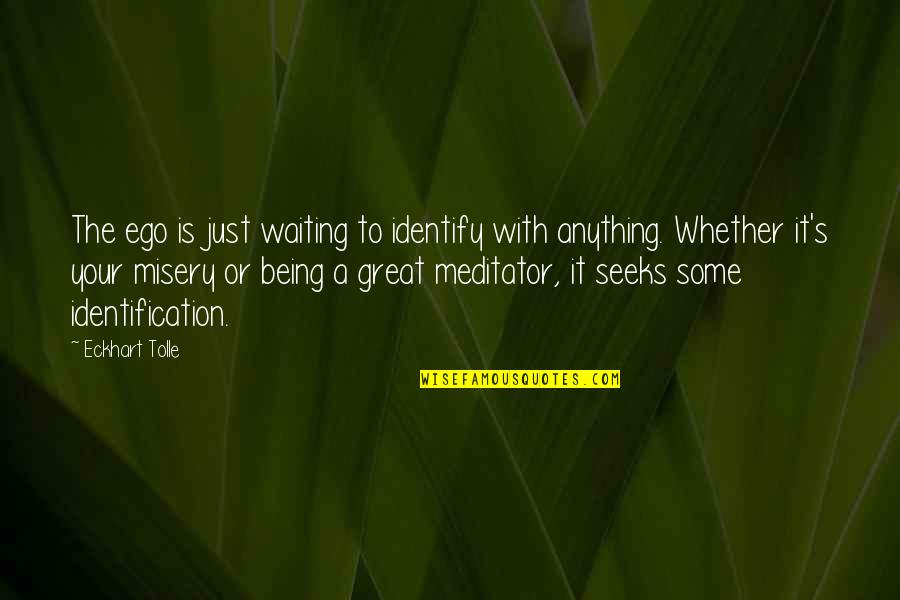 Identification Quotes By Eckhart Tolle: The ego is just waiting to identify with