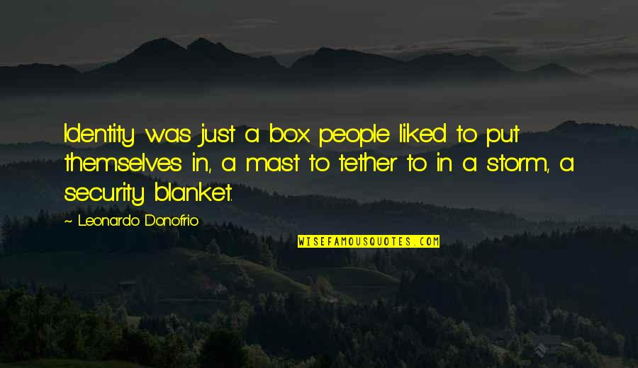Identification Quotes By Leonardo Donofrio: Identity was just a box people liked to