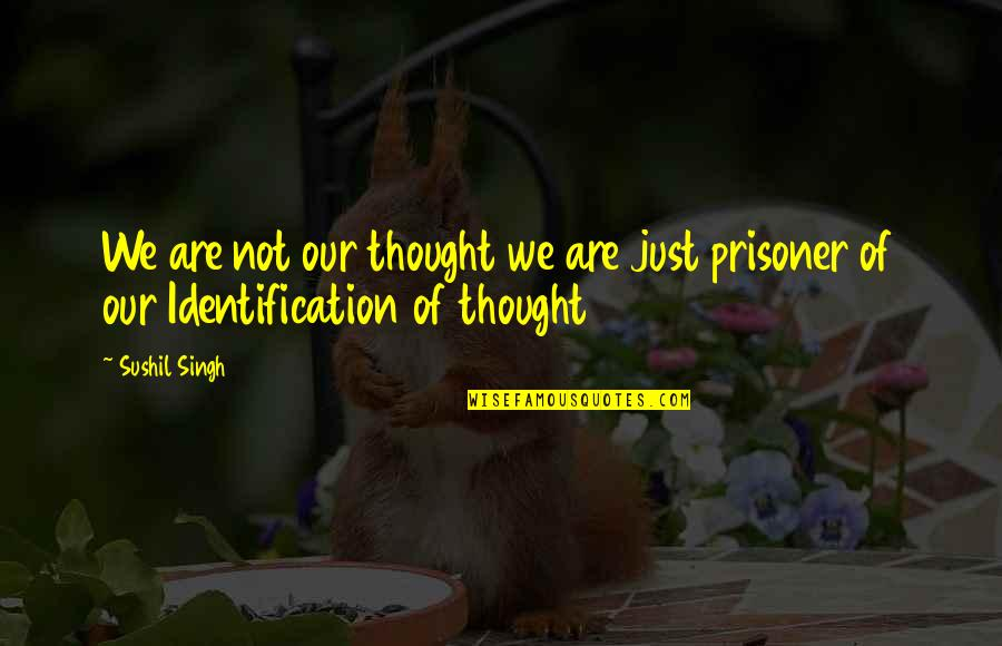 Identification Quotes By Sushil Singh: We are not our thought we are just