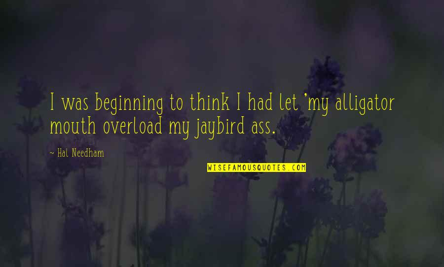 Idiom Quotes By Hal Needham: I was beginning to think I had let
