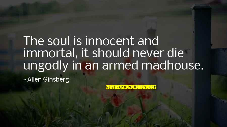 If I Die Soon Quotes By Allen Ginsberg: The soul is innocent and immortal, it should