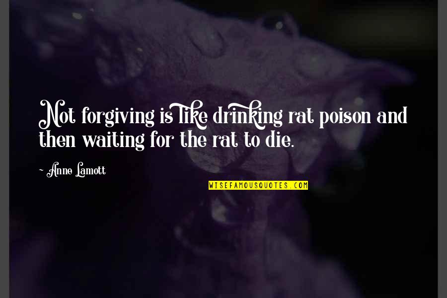 If I Die Soon Quotes By Anne Lamott: Not forgiving is like drinking rat poison and