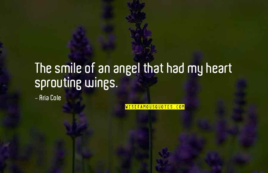 If I Had Wings Quotes By Aria Cole: The smile of an angel that had my
