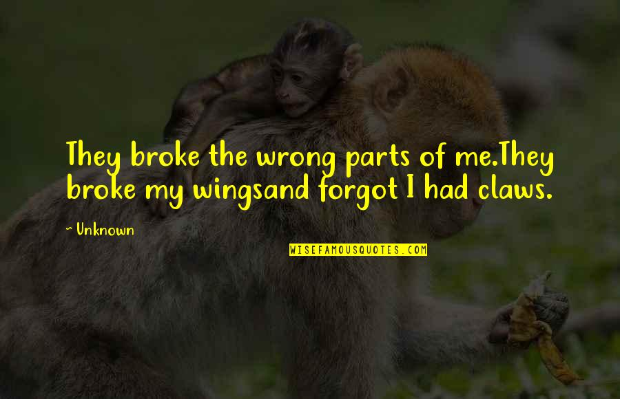 If I Had Wings Quotes By Unknown: They broke the wrong parts of me.They broke