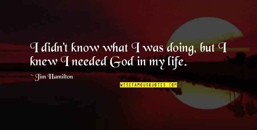 If I Knew Now What I Didn Know Then Quotes By Jim Hamilton: I didn't know what I was doing, but