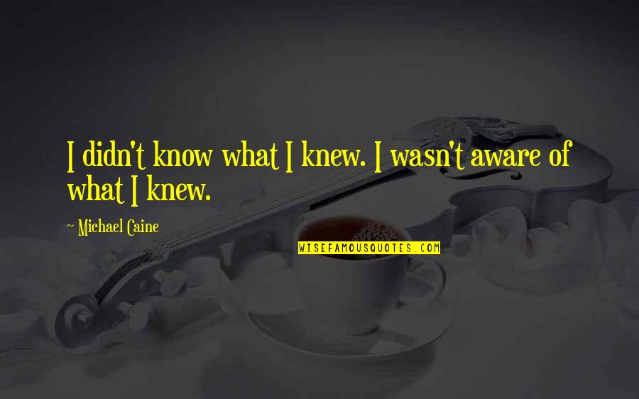 If I Knew Now What I Didn Know Then Quotes By Michael Caine: I didn't know what I knew. I wasn't