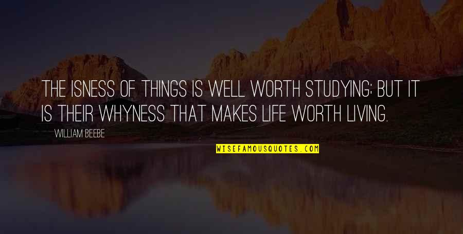 If I Was Worth It Quotes By William Beebe: The isness of things is well worth studying;