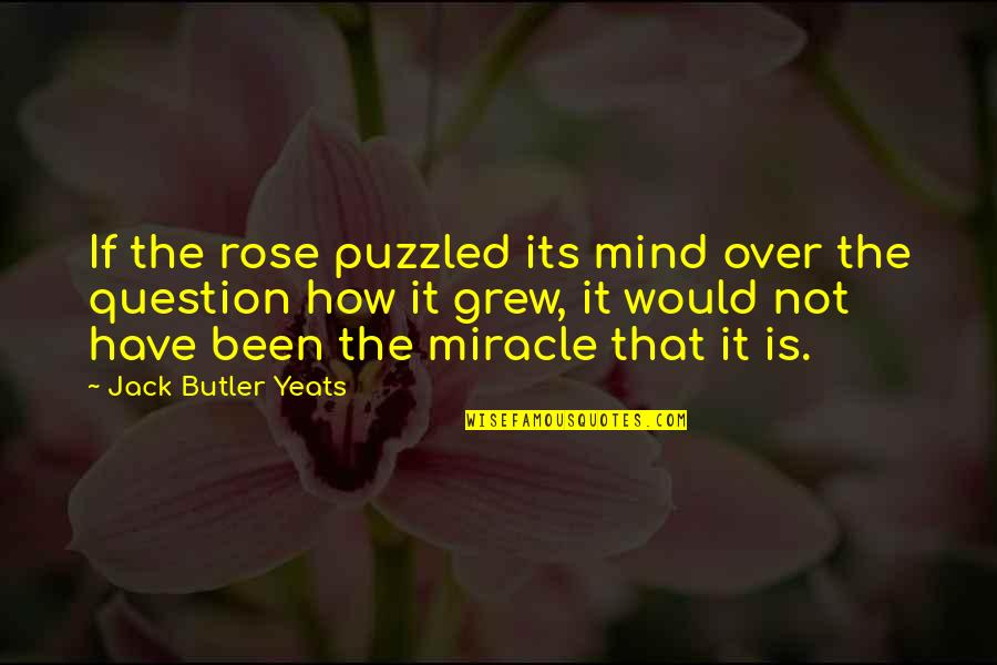If Its Over Quotes By Jack Butler Yeats: If the rose puzzled its mind over the