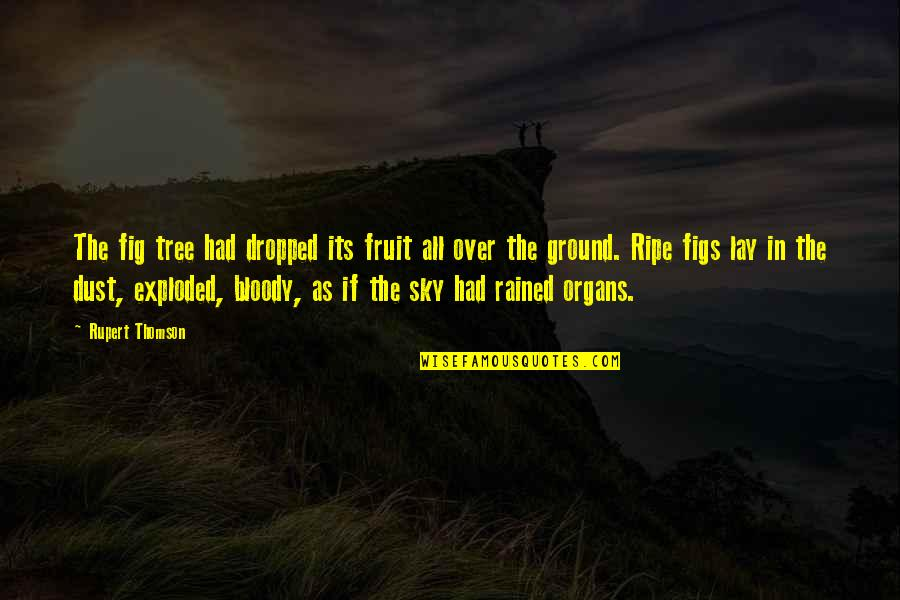 If Its Over Quotes By Rupert Thomson: The fig tree had dropped its fruit all
