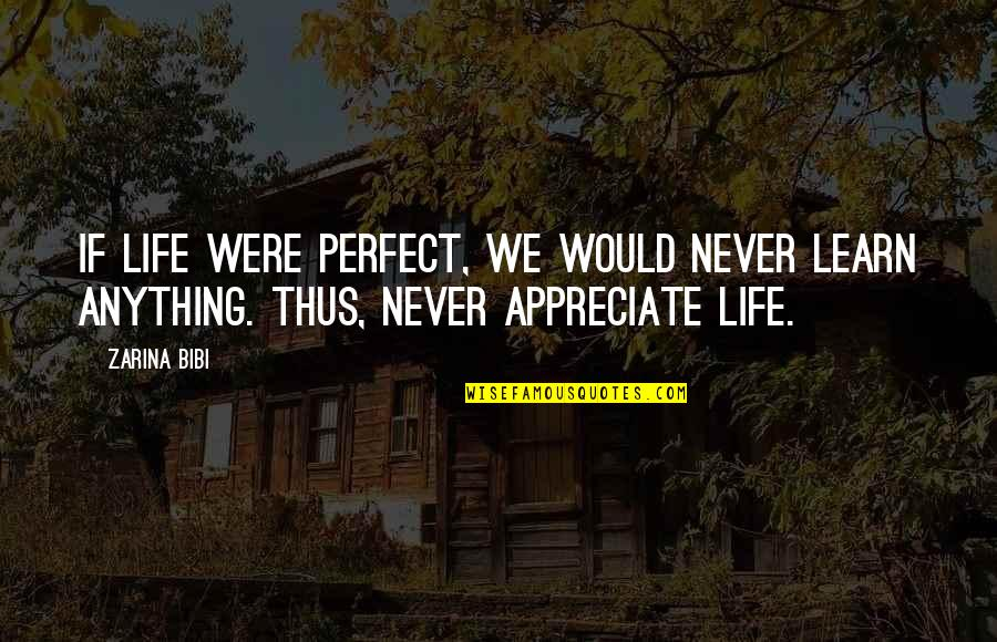 If Life Were Perfect Quotes By Zarina Bibi: If life were perfect, we would never learn