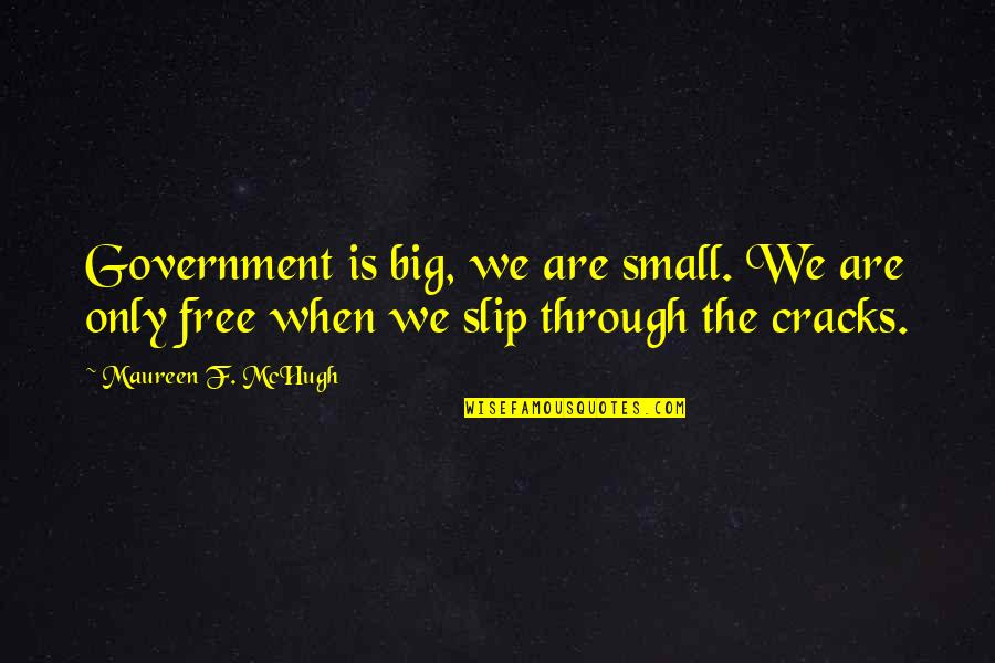 If Loving You Is A Crime Quotes By Maureen F. McHugh: Government is big, we are small. We are