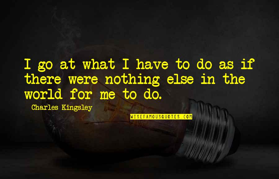 If Nothing Else Quotes By Charles Kingsley: I go at what I have to do