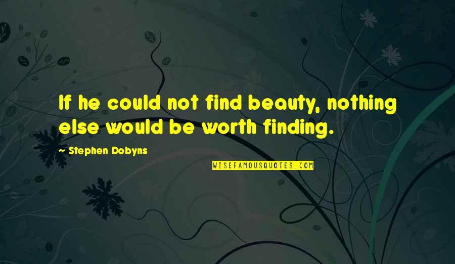 If Nothing Else Quotes By Stephen Dobyns: If he could not find beauty, nothing else