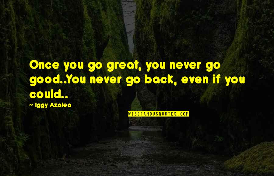 If Only I Could Go Back Quotes By Iggy Azalea: Once you go great, you never go good..You