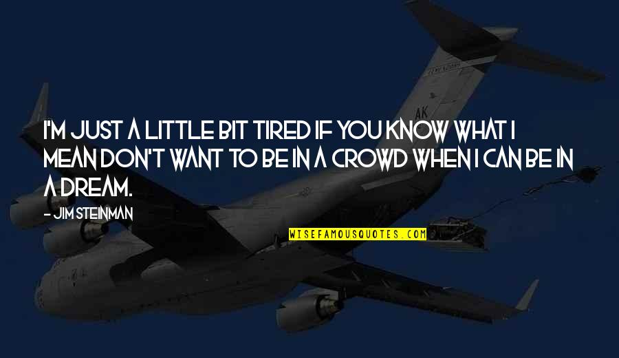 If You Don't Know What You Want Quotes By Jim Steinman: I'm just a little bit tired If you