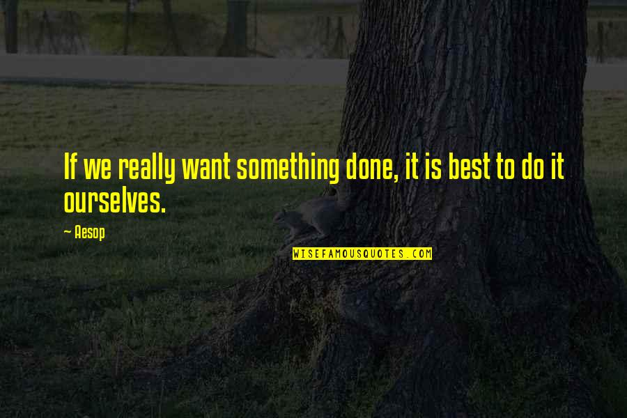If You Want Something In Life Quotes By Aesop: If we really want something done, it is