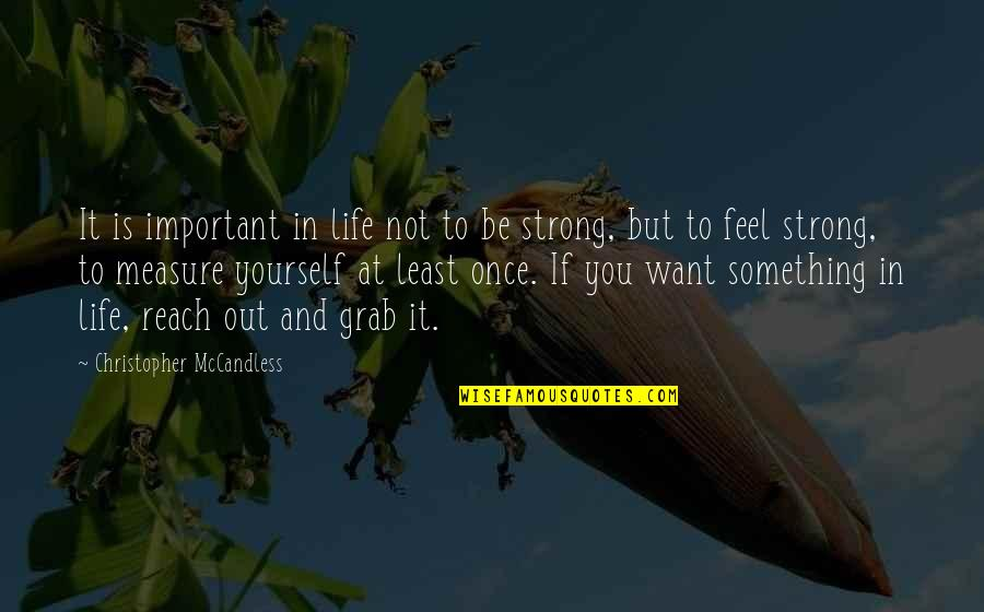 If You Want Something In Life Quotes By Christopher McCandless: It is important in life not to be