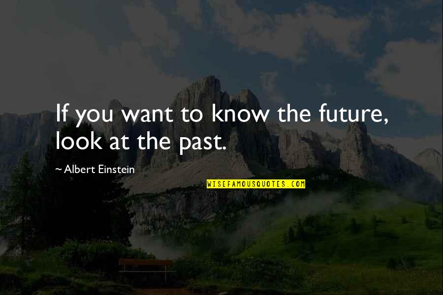 If You Want To Know Quotes By Albert Einstein: If you want to know the future, look